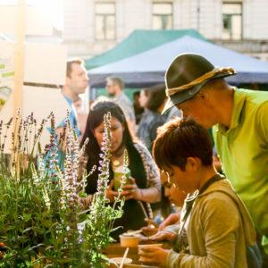 Eifriges Summen auf dem Streetlife Festival in München